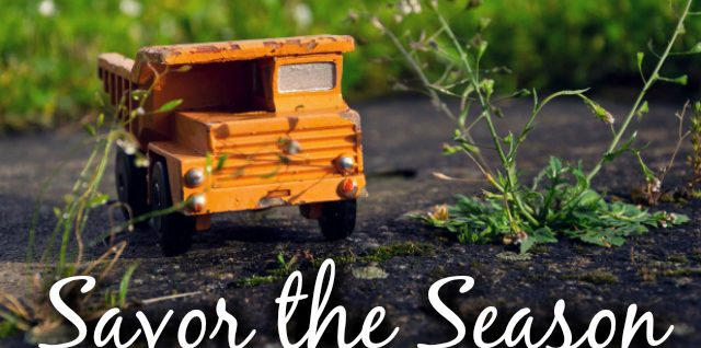Savor the Season – Part 3